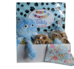 Boy Doggy Birthday Box